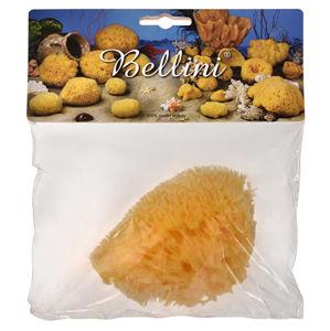 BELLINI Prírodné morská huba - Stredomorská - HONEYCOMB - SVETLÁ 9 - 10 cm